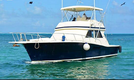 Fishing Charter 41ft