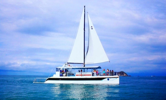 Luxury ''tom Cat Ii'' Cruising Catamaran Charter In Costa Rica