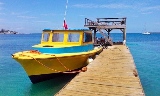 40' Dive Boat Charter In Utila, Honduras