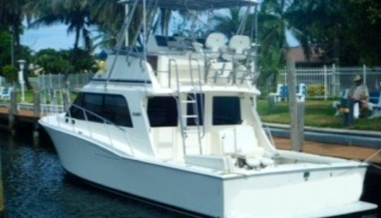 Sport Fisherman For Up To 8 People To Rent In Falmouth, Jamaica