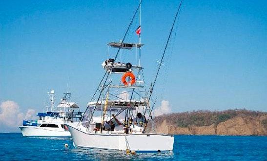 31' Sport Fisherman Fishing Charter In Playa Samara, Costa Rica