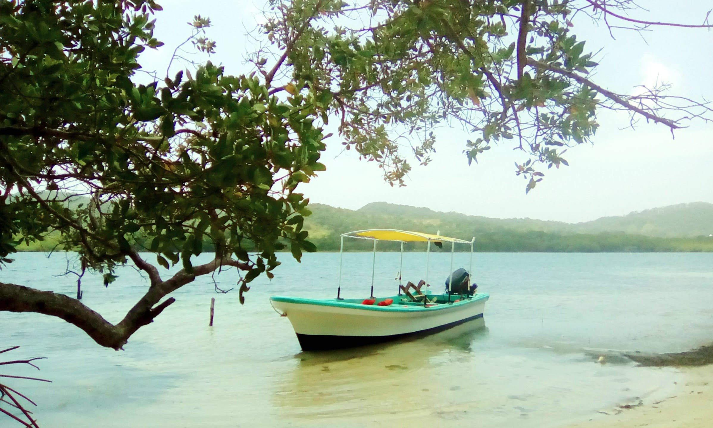 Enjoy Fishing in Islas de la Bahía, Honduras on Bowrider