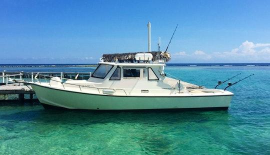 'fishing Time' Deep Sea Fishng Charter In Savannah Bight