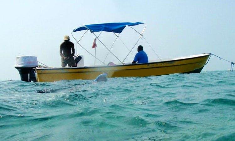 Deep Sea Fishing Trips In San Pedro