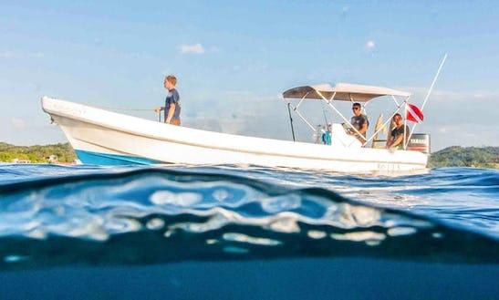 Fun Diving, Snorkeling  Courses In Bay Islands