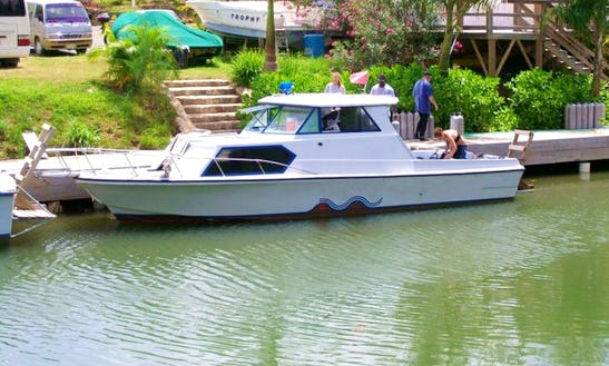31' Dive Boat Charter