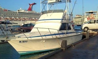 Explore the beautiful waters of Aruba on Sport Fisherman Charter