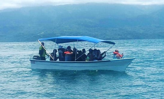 Enjoy Fishing Or Whale Watching In Puntarenas Province, Costa Rica