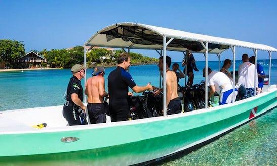 Scuba Diving  Snorkeling Trips In West End