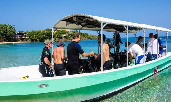 Scuba Diving  Snorkeling Trips In West End