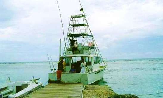 41' Fishing Charter In Jamaica