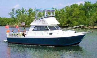 Boat Diving Trips In Cayman Islands