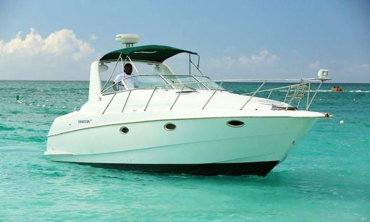 Enjoy Turks and Caicos Islands on 32' Motor Yacht