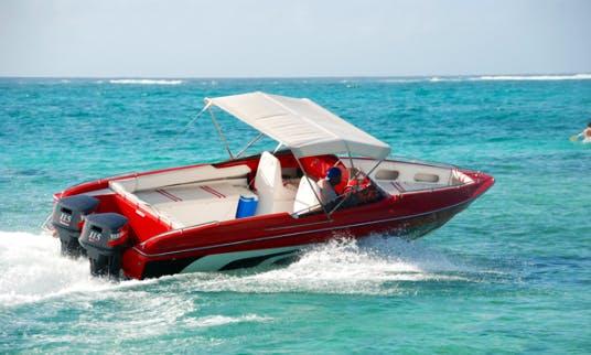Charter 25' Bowrider in Trou d'Eau Douce, Mauritius