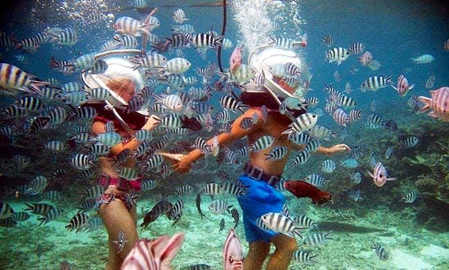 Sea Walking Experience in Quatre Cocos, Mauritius