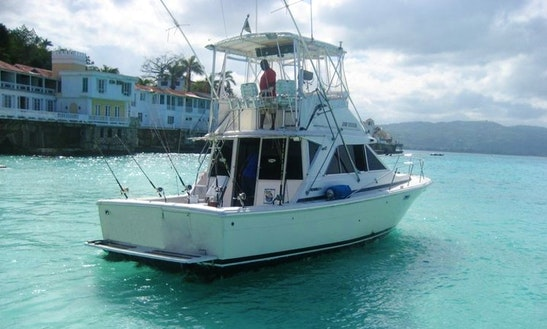 Spend The Day Fishing In Montego Bay, Jamaica On Sport Fisherman