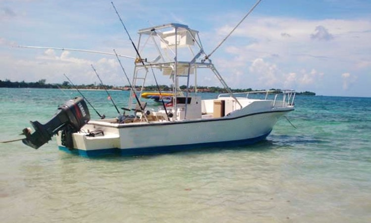 Deep Sea Fishing Charter In Jamaica Getmyboat