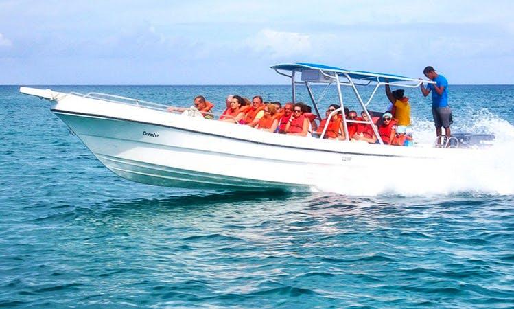 Charter Passenger Boat In Dominicus, Dominican Republic