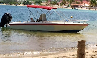Private Speedboat Soufriere Tour