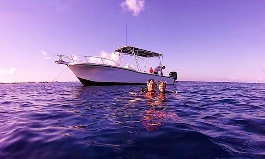 Dive Boat In Grand Cayman Islands