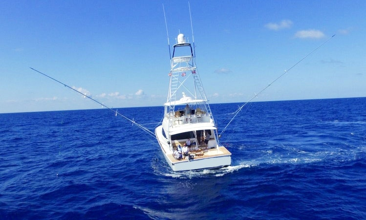 Enjoy Fishing In La Romana Dominican Republic On Viking 72 Sport
