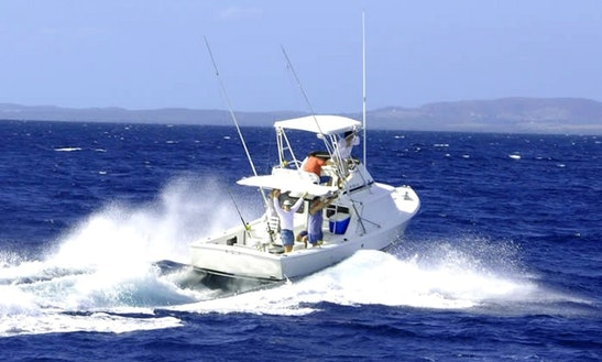 Enjoy Fishing On 40ft Sports Fisherman Yacht With Captain Osva