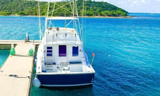 Fishing Charter On 42' Bertram Sport Fisherman Yacht In Virgin Gorda, British Virgin Islands