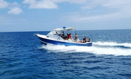 Bertram 31 Sport Fishing On Blue Boy In Saint Lucia