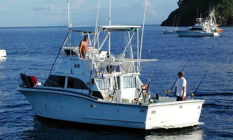 Enjoy Fishing in Bridgetown, Barbados on Sports Fisherman