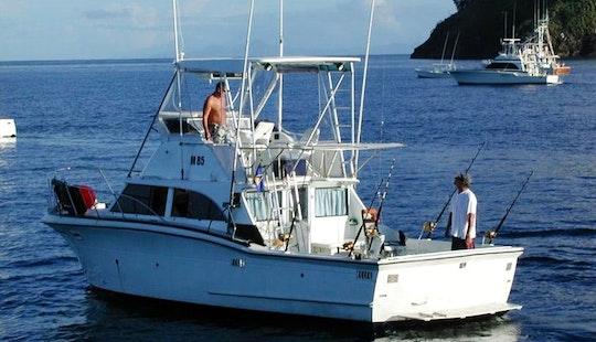 Enjoy Fishing In Bridgetown, Barbados On Sports Fisherman