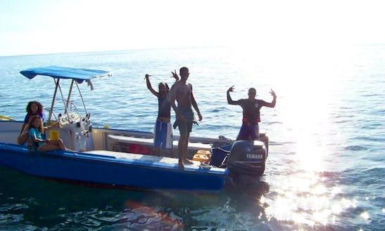 Dive Boat In Dominica