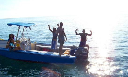 Dive Boat In Dominica
