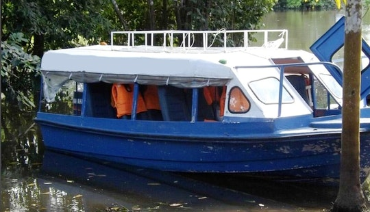 Guided Boat Trips On Amazon River, Peru