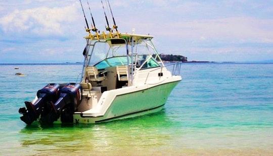 Cuddy Cabin Boat Fishing Charter In Bella Vista, Panama