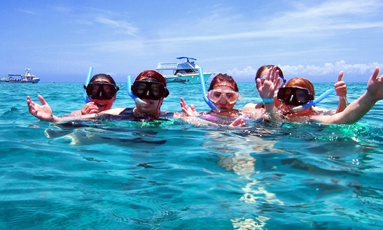 Snorkeling Day In Cozumel From Tulum, Akumal And Pto Avents By Glass Bottom Boat