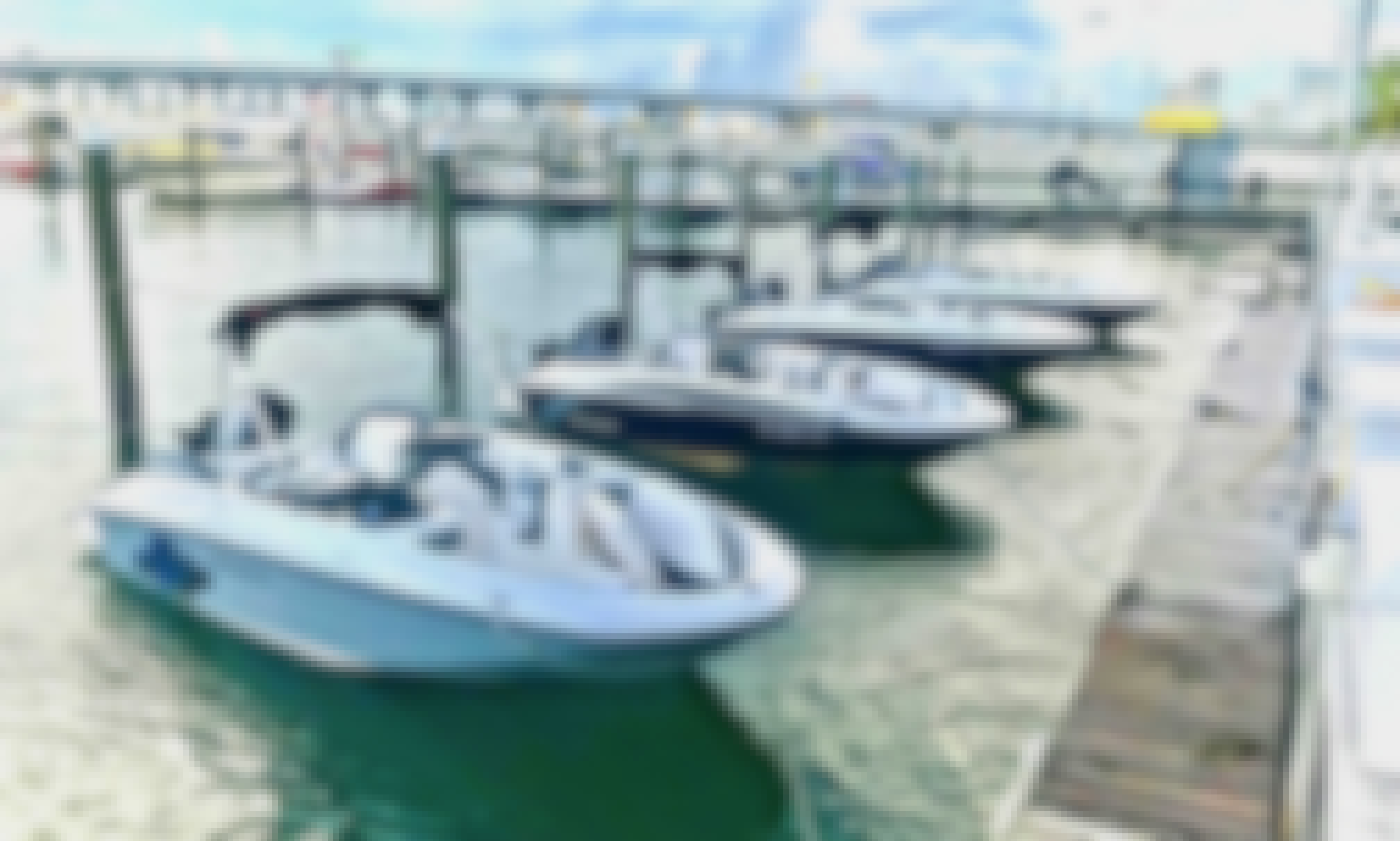 Be a Captain of Bayliner Element 16 in Miami, Florida! (2, 4, 7 or 8 Hour spots available)
