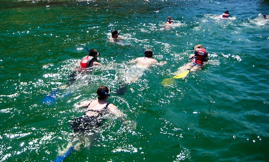 Professional Snorkeling And Boat Tours In Cabo San Lucas