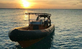 """Charter 25ft """"Powerboat Caribbean II"""" RIB In Willemstad, Curaçao"""