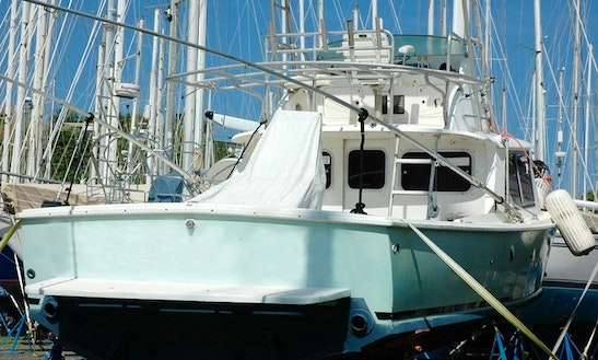 31' Classic Bertram Fishing Charter In Grenada