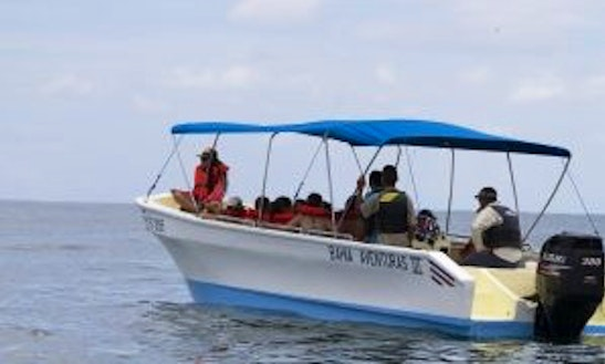 Experienced Guides For Full Or Half Day Fishing Charter