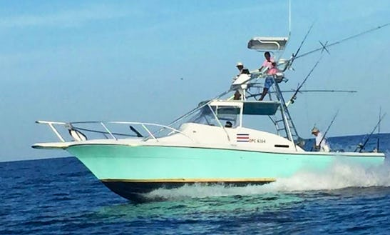 Fishing, Snorkeling And Dolphin Watching In San José, Costa Rica