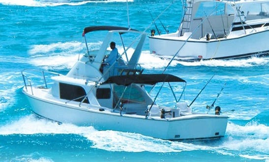 31' Fishing Charter In Cancún, Mexico