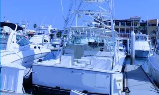 Enjoy Fishing In Baja California Sur, Mexico On 40' Albermale Sport Fisherman