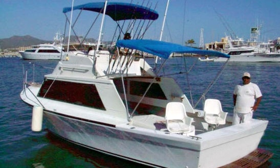 Cabo San Lucas Fishing Charter On 28ft