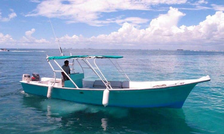 Experience a marine life around Isla Mujeres, Mexico
