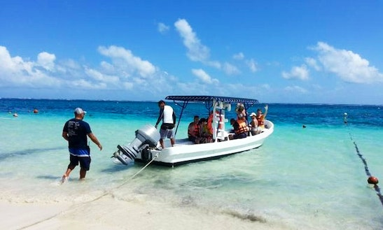 Diving  Snorkeling Tours In Puerto Morelos