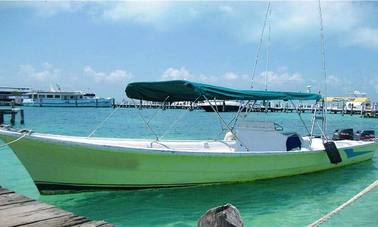 Whale Watching Tour Boat In Isla Mujeres