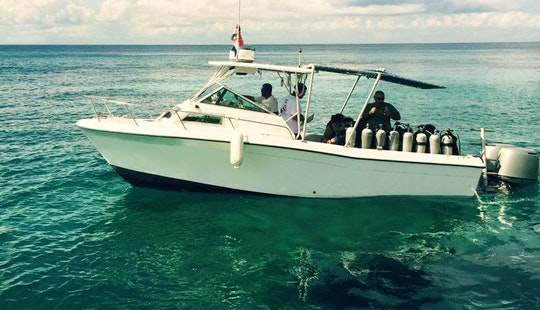 26' Grady White Dive Boat In Cozumel