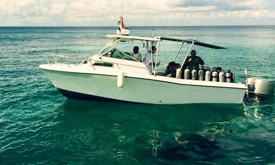 26' Grady White Dive Boat In Cozumel