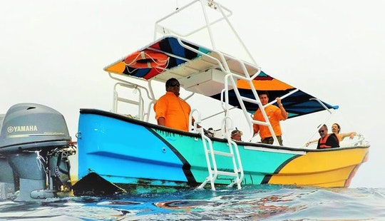 All Inclusive Whale Shark Tour For Up To 8 People In Holbox, Mexico